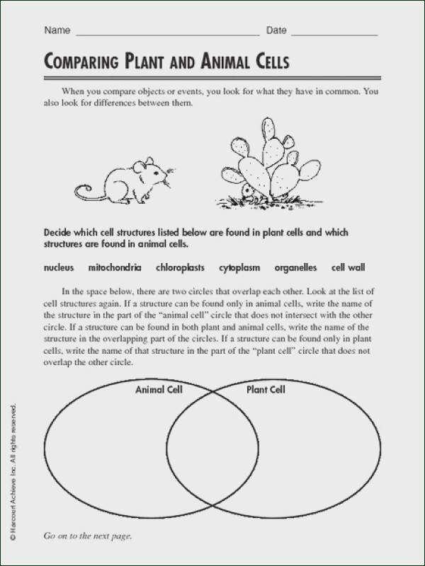 Printable Cell Worksheets Kx 5777] Animal Cell Plant Cell and Plants Pinterest