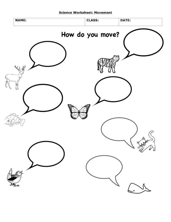 Science Worksheet First Grade Animals Move Science Worksheets Interactive 1st Grade Health