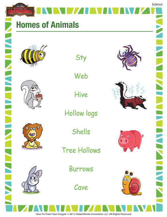 Science Worksheet First Grade Homes Of Animals– Free Printable Science Worksheet for 1st