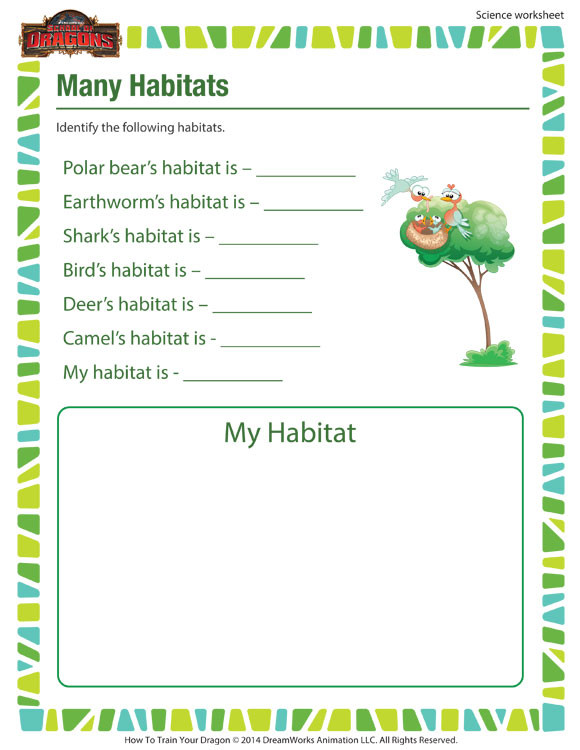 Science Worksheet First Grade Many Habitats Activity 1st Grade Science Worksheet sod