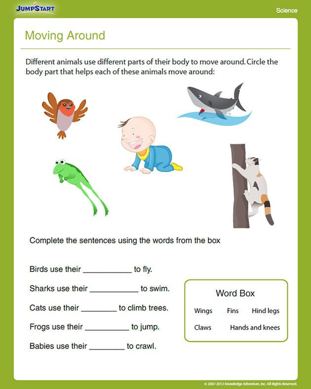 Science Worksheet First Grade Moving Around View – Free First Grade Science Worksheet