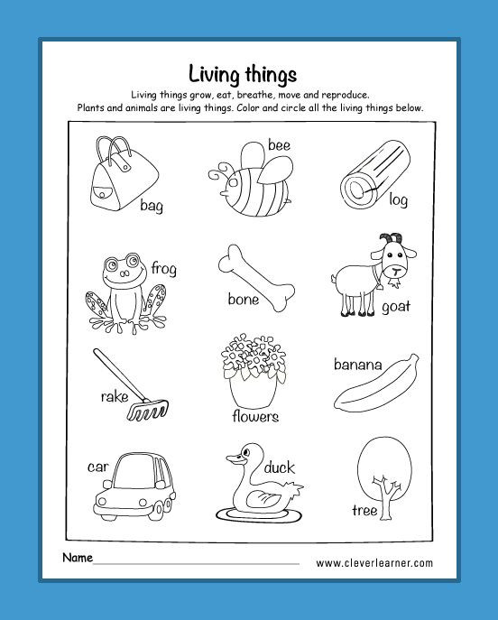 Science Worksheets for Kindergarten Free Am I Living Worksheets for Kindergarten Livingthings
