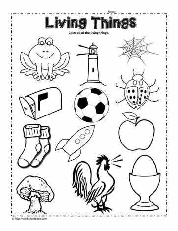 Science Worksheets for Kindergarten Free Circle the Living Things Worksheet