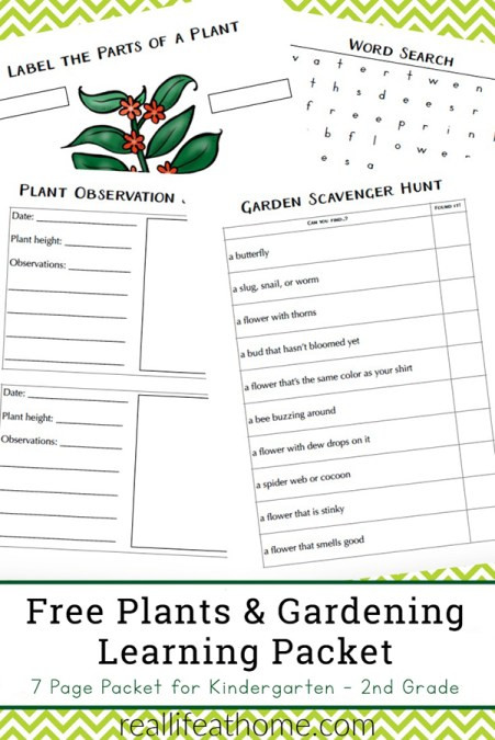 Second Grade Science Worksheets Free Free Plant Worksheets for Kindergarten 3rd Grade Perfect