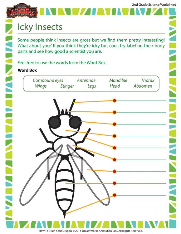 Second Grade Science Worksheets Free Icky Insects Worksheet – 2nd Grade Life Science – School Of