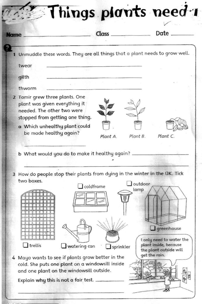 Second Grade Science Worksheets Free the City School Grade Science Reinforcement Worksheets for