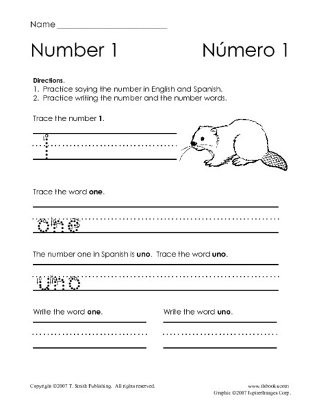 Spanish Kindergarten Worksheets Numbers In English and Spanish Worksheet for Pre K