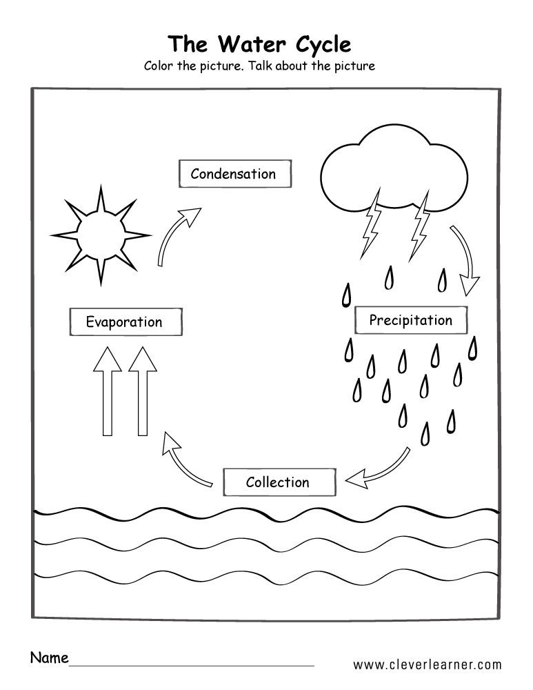 Water Cycle Worksheet Kindergarten What is the Water Cycle 88collinsl Teaching Resources