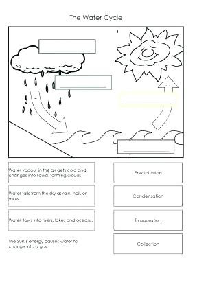 Water Cycle Worksheets 2nd Grade the Water Cycle Worksheets Free Printable Water Cycle