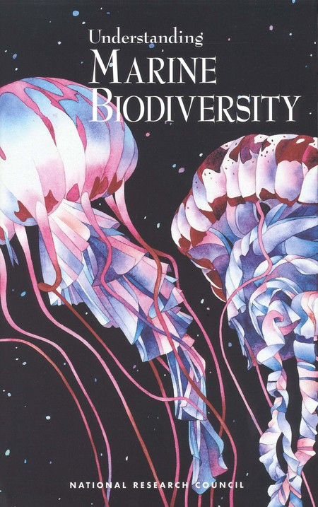 6 3 Biodiversity Worksheet Answers 3 Biodiversity Changes Due to Anthropogenic Effects