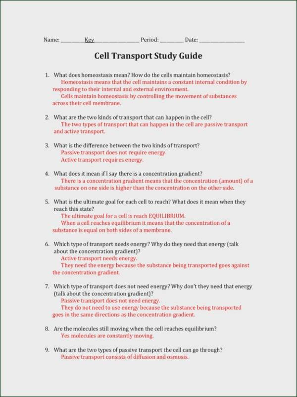 7 3 Cell Transport Worksheet Answers Homeostasis and Cell Transport Worksheet Answers