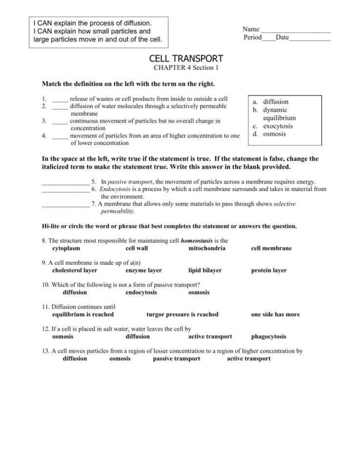 Active and Passive Transport Worksheet 26 Active Transport Worksheet Answer Key Worksheet