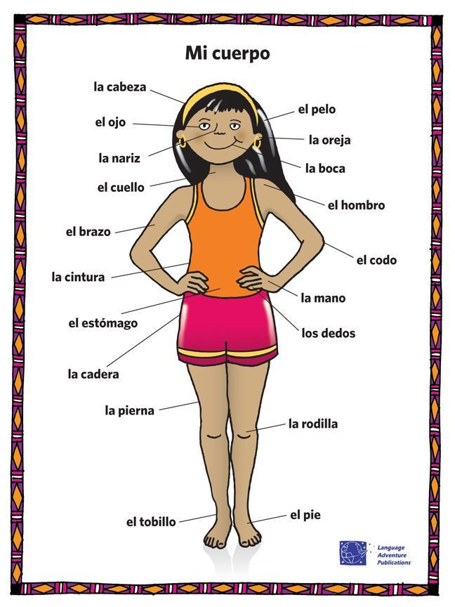 Body Parts In Spanish Worksheet Pin On Board 2