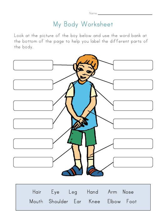 Body Parts In Spanish Worksheet Pin On Espanol