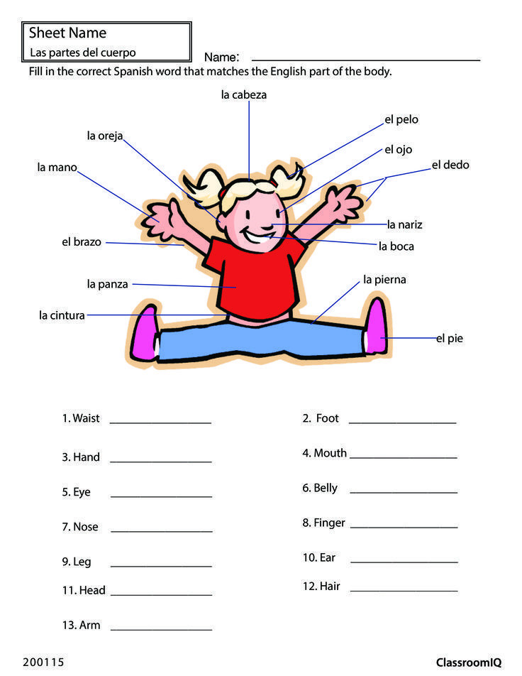 Body Parts In Spanish Worksheet Pin On Spanish Teacher Ideas