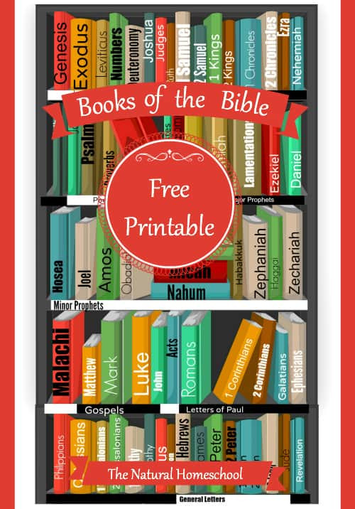 Books Of the Bible Worksheet Books Of the Bible Free Printable Worksheets and More