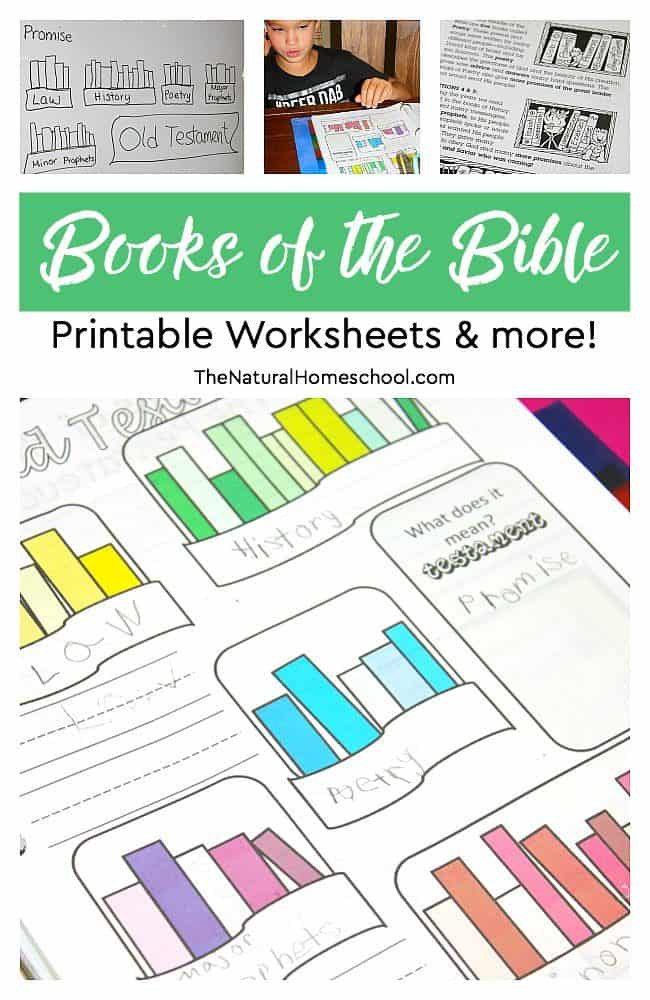 Books Of the Bible Worksheet Books Of the Bible Printable Worksheets & More the