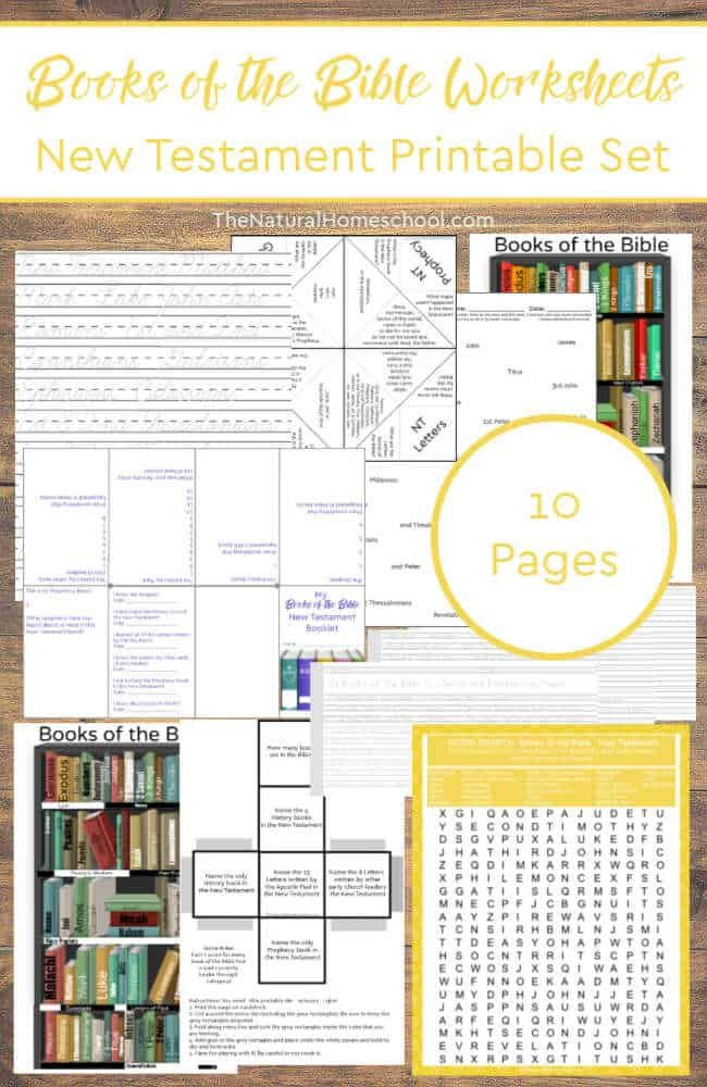 Books Of the Bible Worksheet Books Of the Bible Worksheets New Testament Printable Set