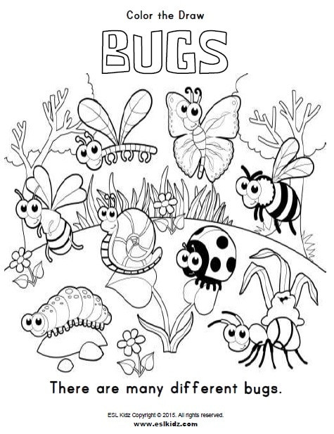 Bug Worksheets for Preschool Bugs Activities Games and Worksheets for Kids
