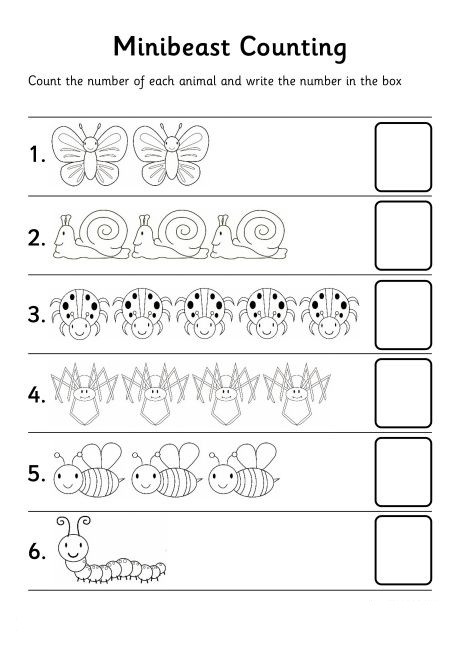 Bug Worksheets for Preschool Bugs Count Number Worksheet