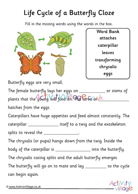 Butterfly Life Cycle Worksheet butterfly Life Cycle Cloze