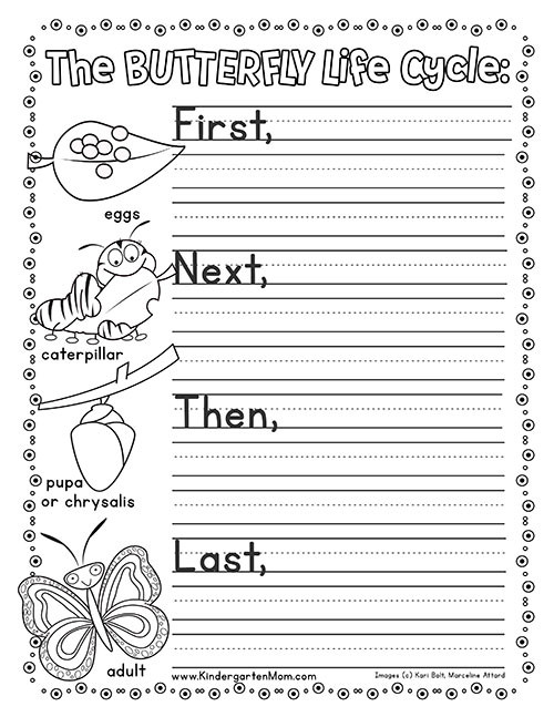 Butterfly Life Cycle Worksheet butterfly Life Cycle Printables Kindergarten Mom