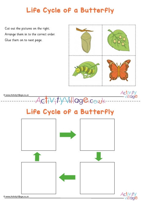 Butterfly Life Cycle Worksheet butterfly Life Cycle Sequencing Worksheet