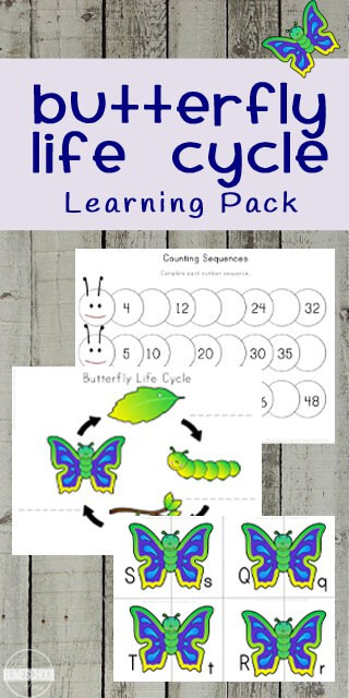 Butterfly Life Cycle Worksheet Free butterfly Life Cycle themed Worksheets