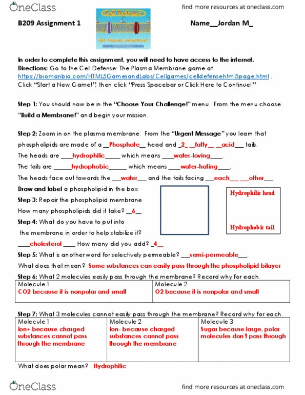 Cell Membrane Worksheet Answers Biol 209 Lecture Notes Spring 2019 Lecture 14 Lipid
