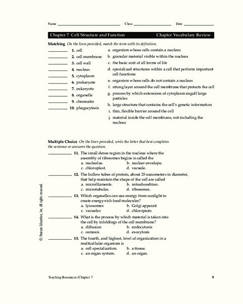 Cell Structure and Function Worksheet Cell Structure and Function Worksheet for 9th Higher Ed