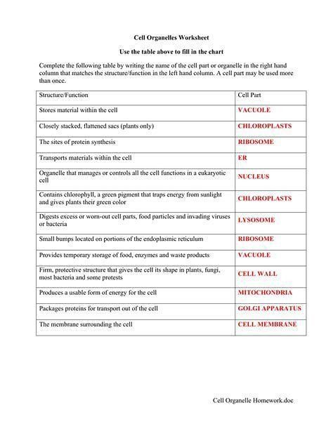 Cell Structure and Function Worksheet Pin On Worksheet Templates for Student