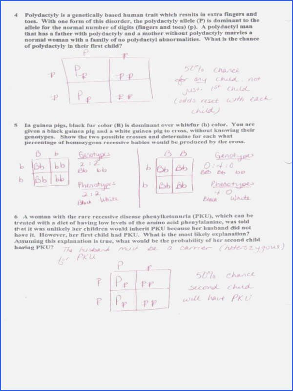 Dihybrid Cross Worksheet Answers Pin On Biology