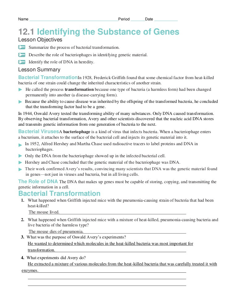 Dna Base Pairing Worksheet Chapter12 Packet