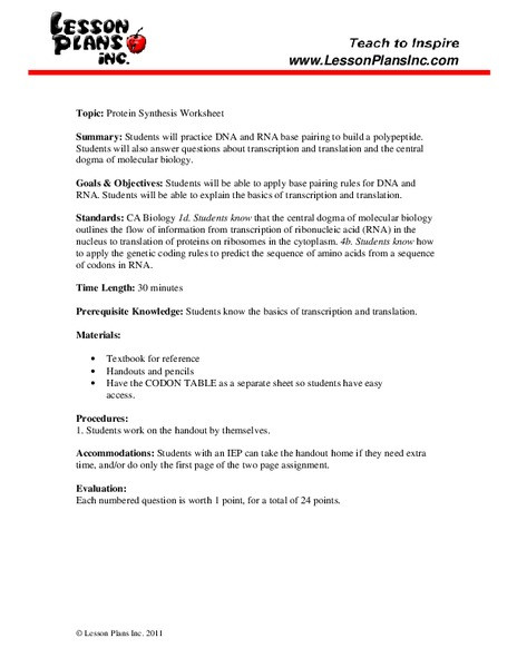 Dna Base Pairing Worksheet Protein Synthesis Worksheet Worksheet for 9th 12th Grade
