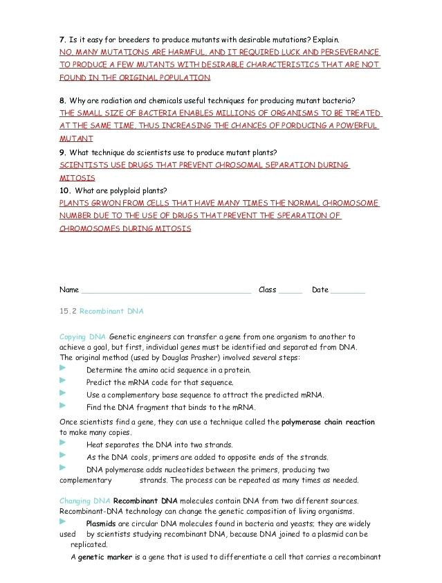 Dna Mutations Practice Worksheet Genetic Mutations Worksheet Key Nidecmege