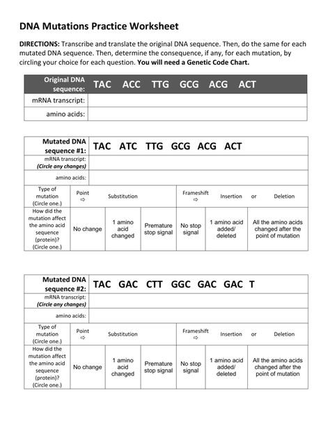 Dna Mutations Practice Worksheet Ho Coani Coani0187 On Pinterest