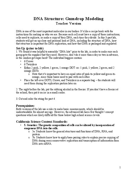 Dna Structure Worksheet High School Dna Structure Gumdrop Modeling Lesson Plan for 9th 12th