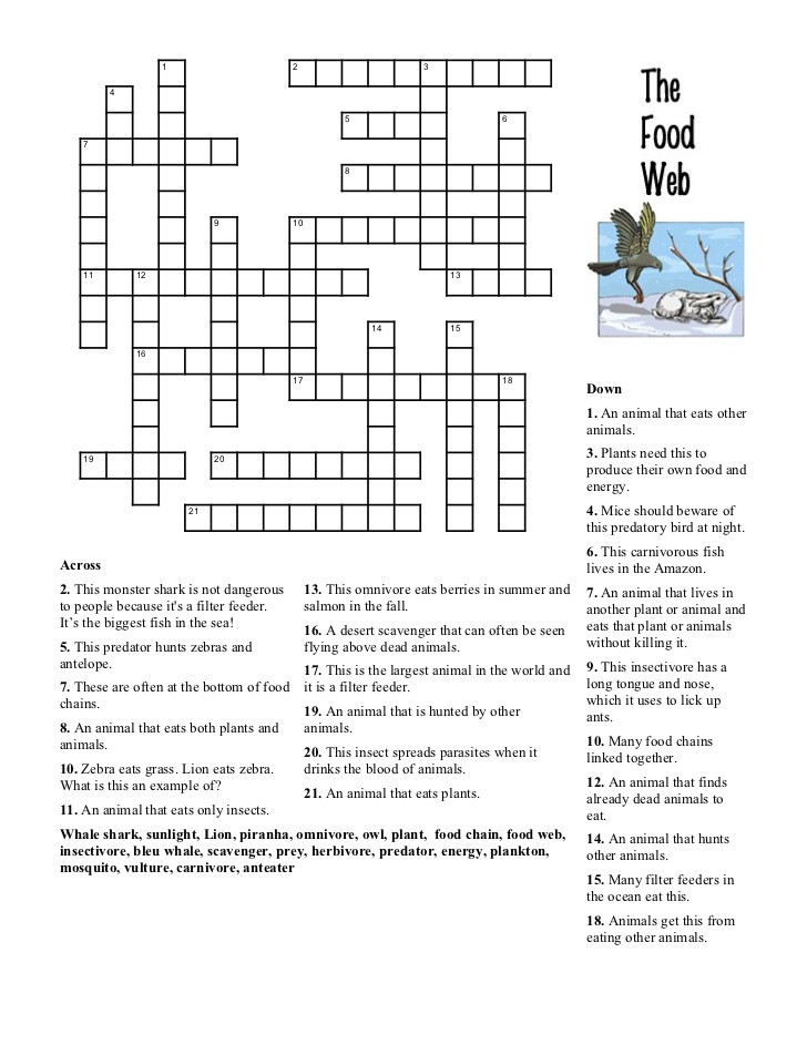 Ecological Pyramids Worksheet Answers Food Web Crossword