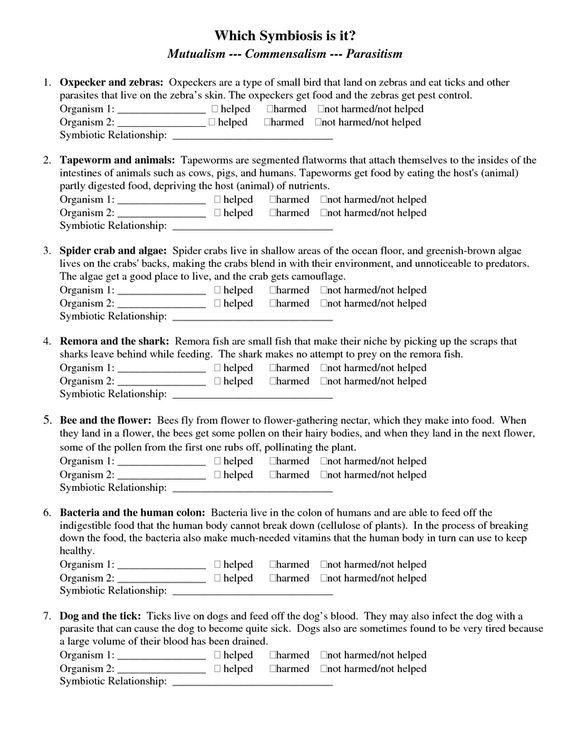 Ecological Relationships Worksheet Answers Betterlesson