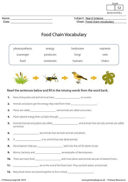 Ecological Relationships Worksheet Answers Peubarland Ecological Relationships Food Webs Answers
