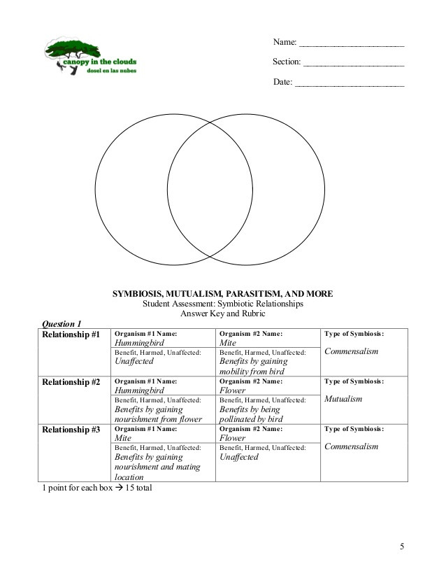 Ecological Relationships Worksheet Answers Symbiosis Lesson 2