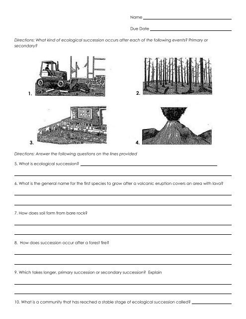 Ecological Succession Worksheet Answer Key Name Due Date Directions What Kind Of Ecological Succession