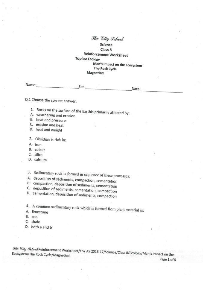 Ecology Worksheets Middle School 3 Grade Ecology Worksheets Grade 8 Grade 8 Adding Fractions