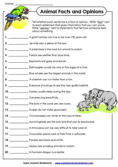 fact opinion worksheets