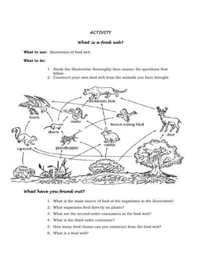 Food Web Worksheet Pdf Food Web Worksheet Activity 6 Answers