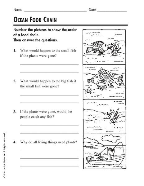 Food Web Worksheet Pdf Worksheet Free Food Chain Worksheets Caytailoc Free