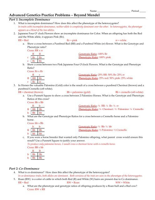 "Genetics Practice Problem Worksheet More Genetics Problems ¢€"" Beyond Mendel"