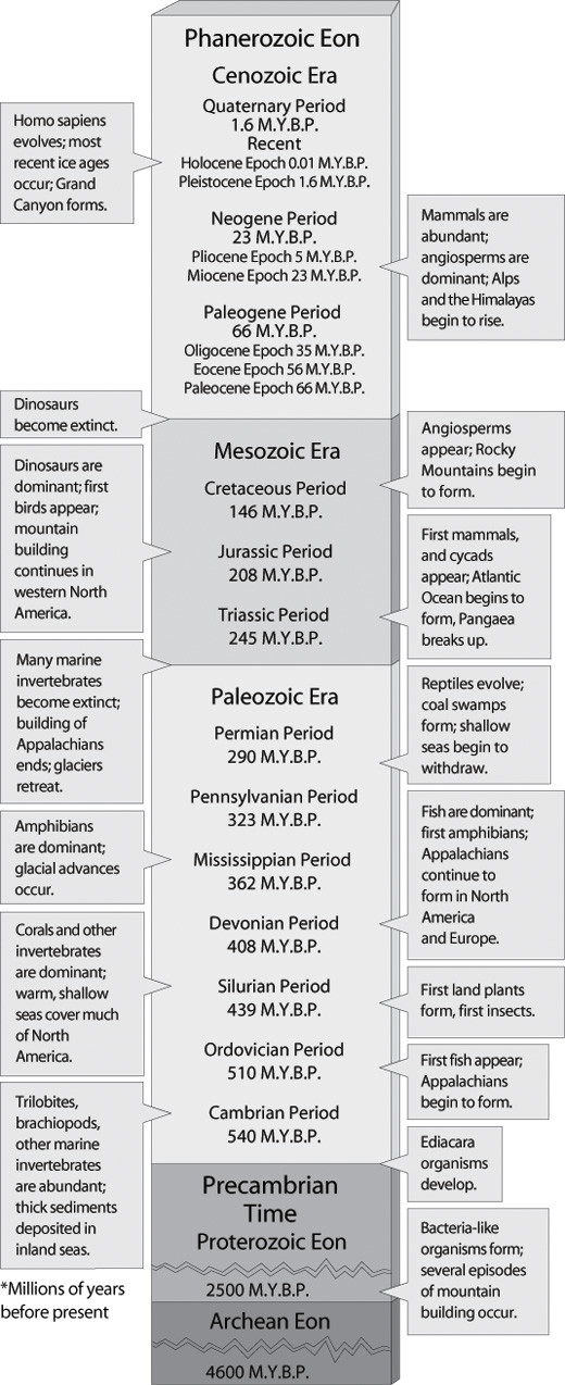 Geological Time Scale Worksheet the Geologic Time Scale