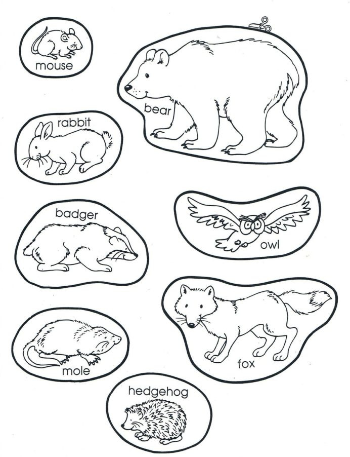 Hibernation Worksheets for Preschool the Mitten Animals Preschool Books Winter Kindergarten