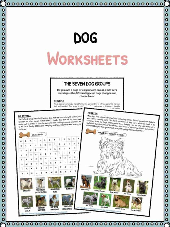 Informational Text Worksheets Middle School Dog Facts & Information & Worksheets for Kids